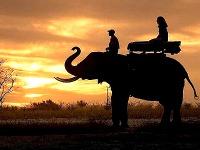 South Africa Kruger Safari 200