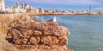 Cadiz lockt geradezu mit schmeichlerischer Schönheit und sorgt dafür, dass Touristen einen unvergesslichen Urlaub erleben können