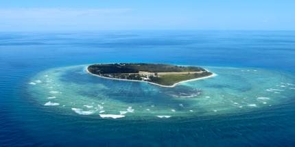 Lady Elliot Island's fringing reef