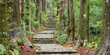 Rediscover your spirituality with a trek through the Japanese mountains