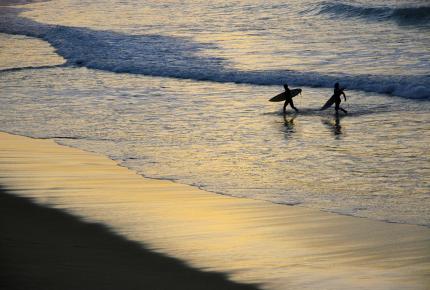 Surfing is flourishing in San Sebastián