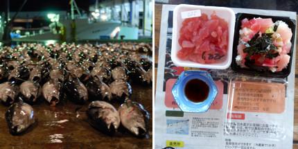 Foodie Japan - Tuna+breakfast
