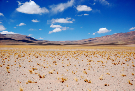 Unspoilt nature as far as the eye can see