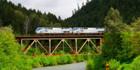 Take the Coast Starlight Amtrak train to LA and admire the views