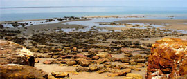East Point Reserve, Darwin