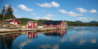 See stunning scenery on a fjord cruise