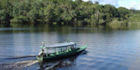 Board a boat tour in Manaus and discover the Amazon