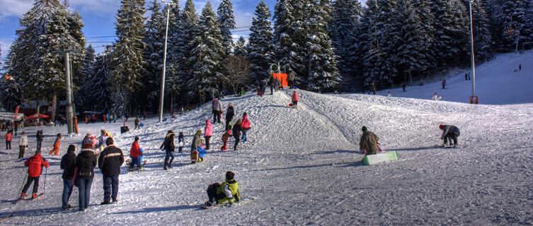 Borovets sled hill