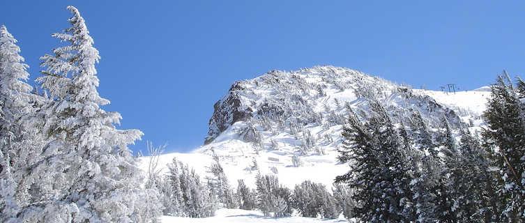 Mammoth's slopes