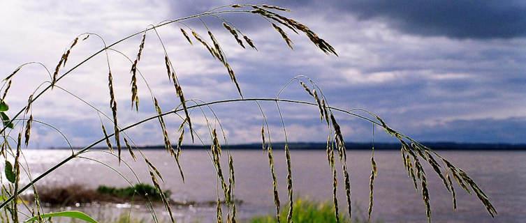 Rio Parana in Paraguay