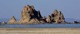 Lac Abbe Flamingos and Rock Formation, Djibouti