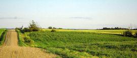 Rural Saskatchewan