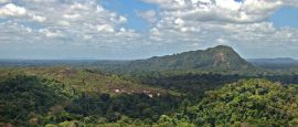 View of the Amazon jungle from the summit of Mt Volzburg in Suriname