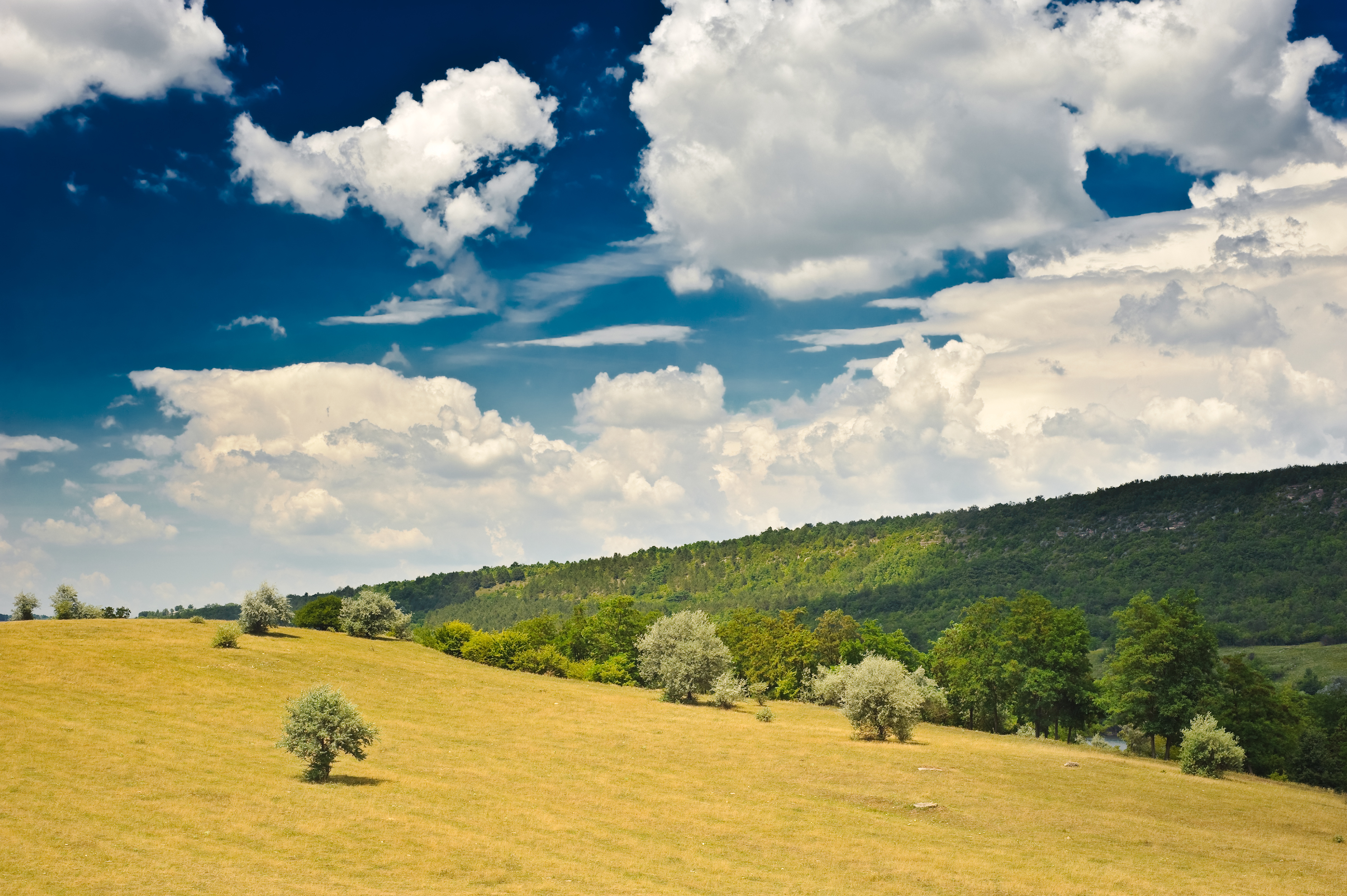 Moldova's forests are a huge draw