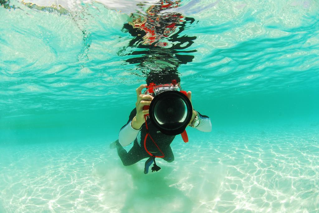 Enjoy diving in Palau