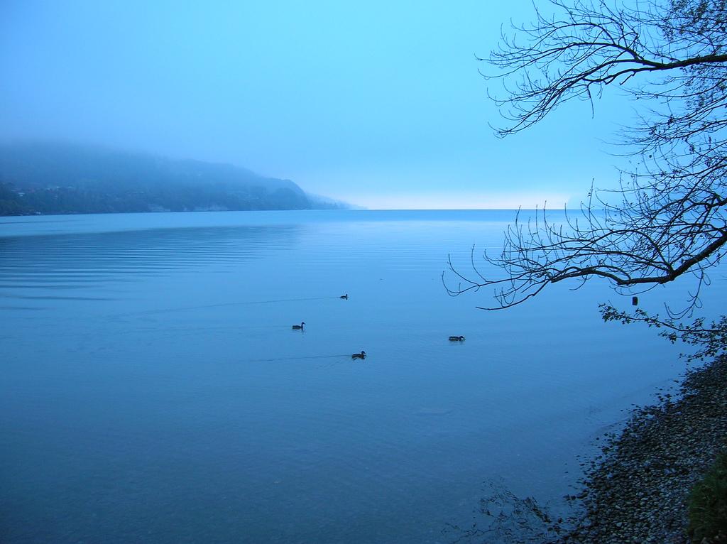 Morning mist at Interlaken, Switzerland