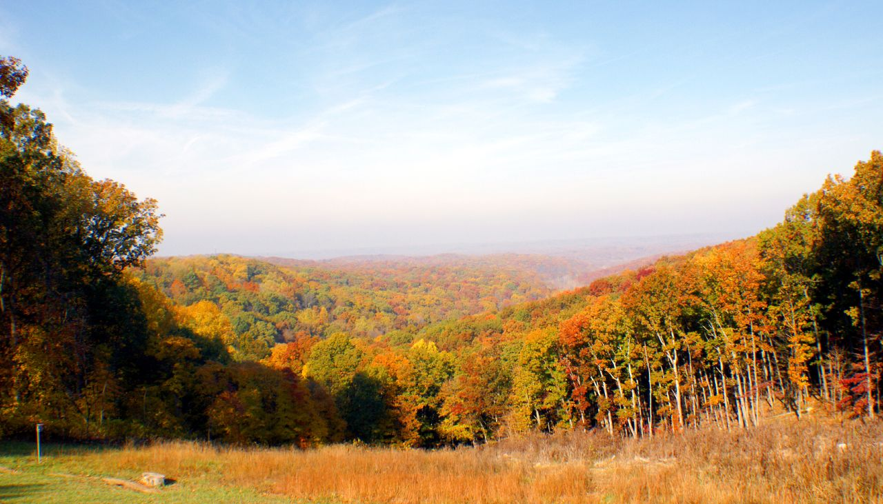 Indiana state forest
