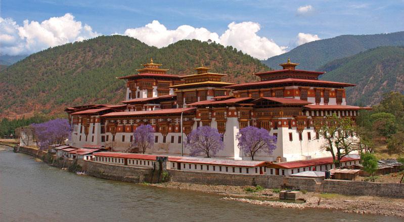 Elephant Hill, Punakha, Bhutan