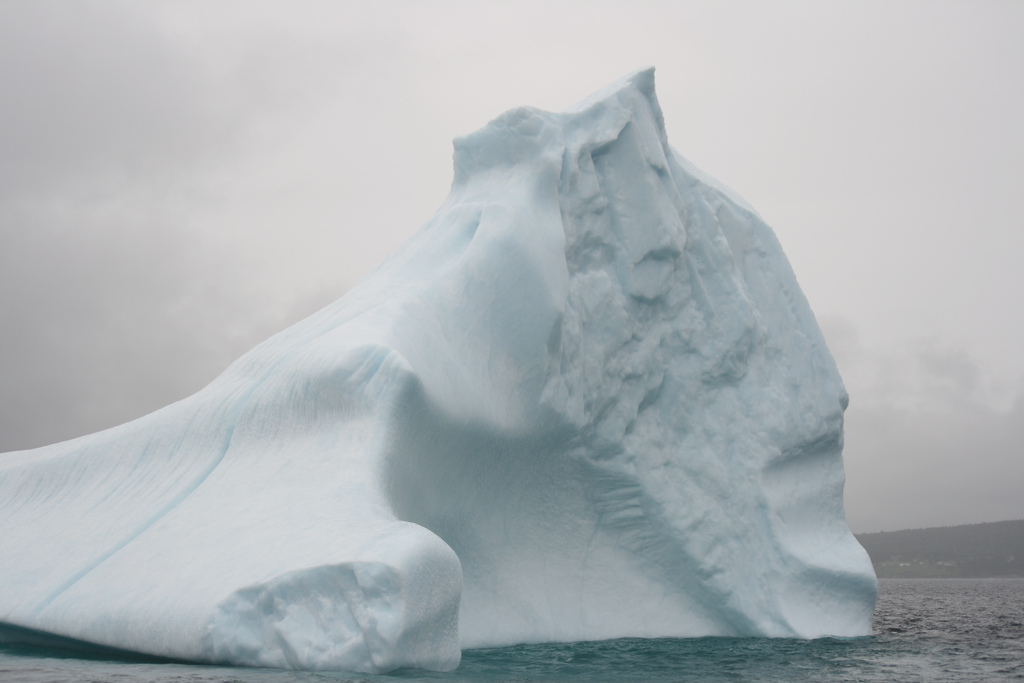 Icebergs are a typical winter feature of Newfoundland