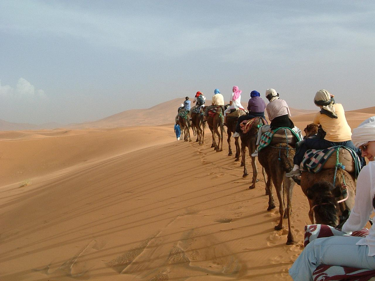 Camel riding in Morocco's Sahara desert