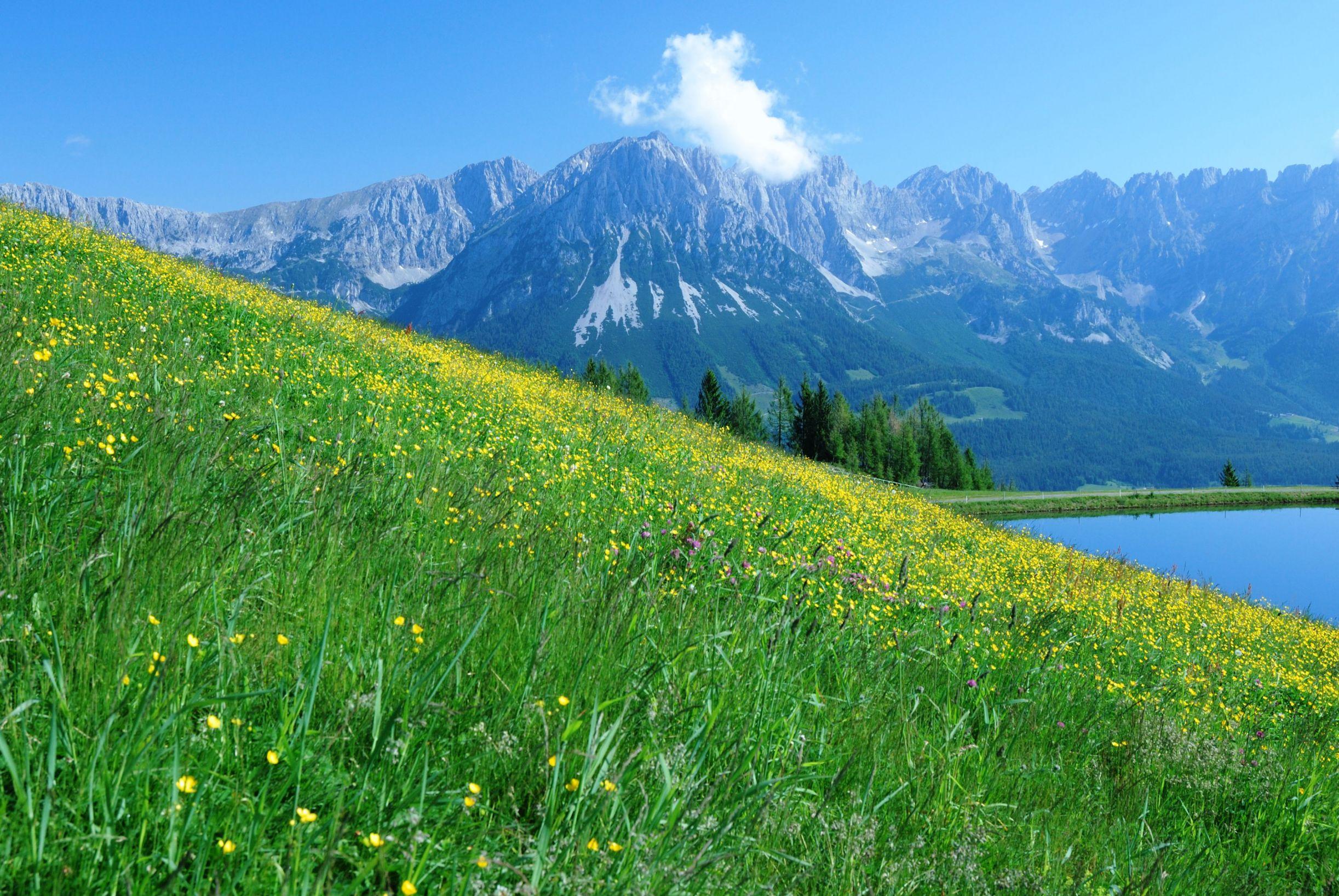 Wilder Kaiser region, Austria