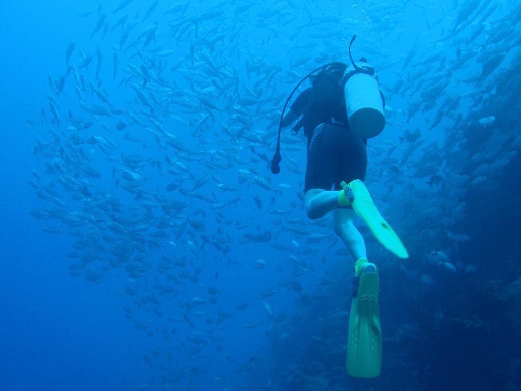 Diver in Micronesia