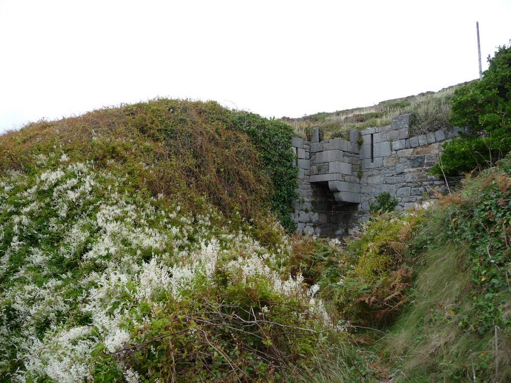 Overgrown fort, Alderney