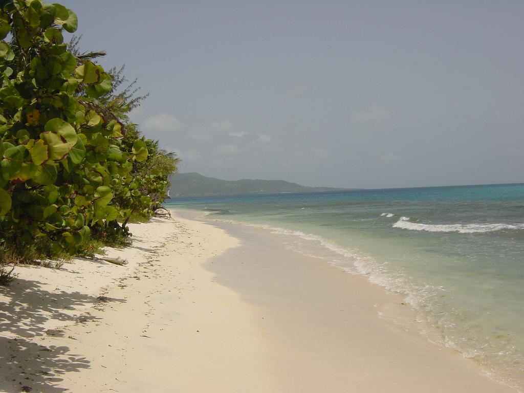 Beach, St Vincent
