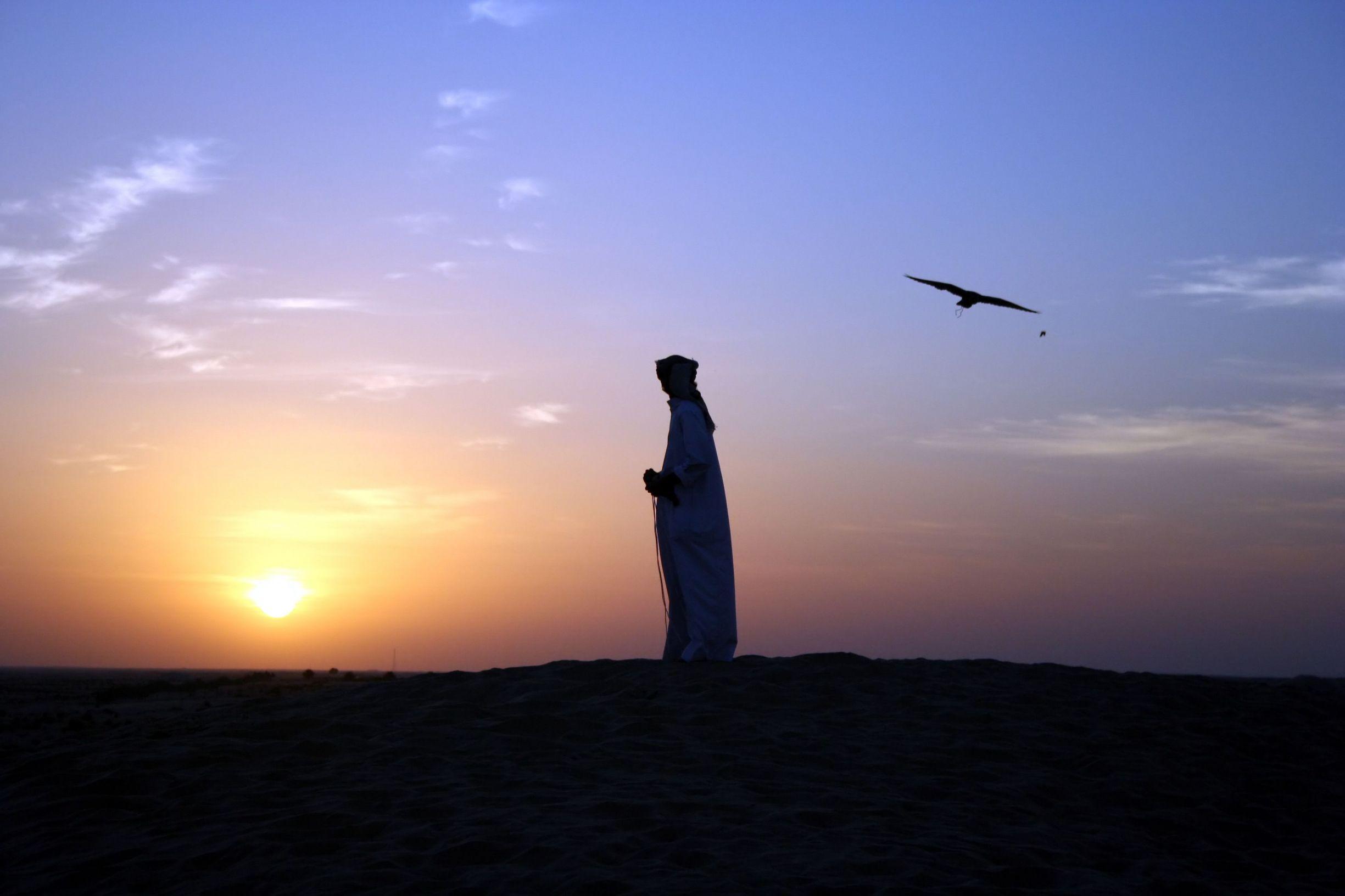 Falconer at sunset