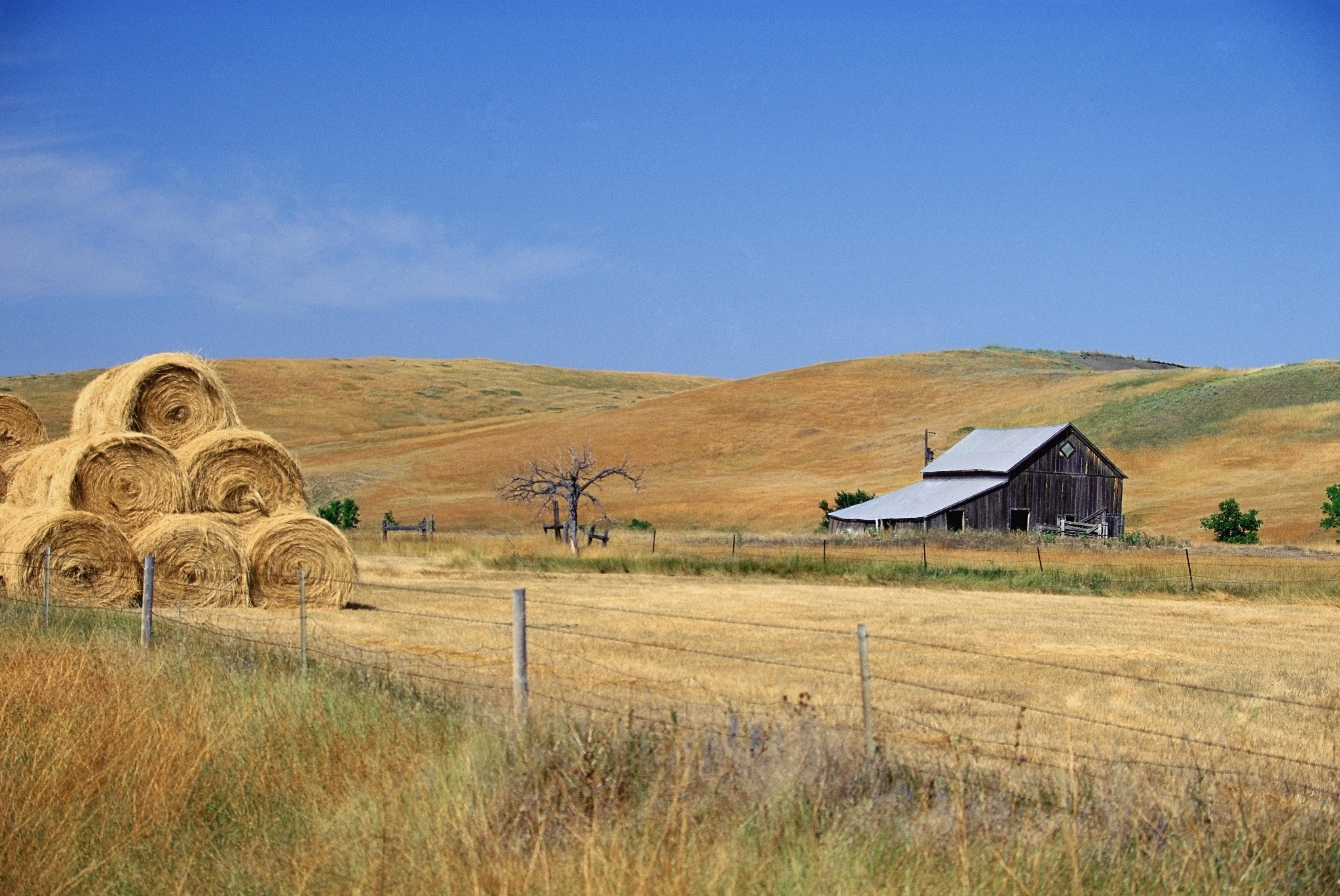 A remote farm in South Dakota