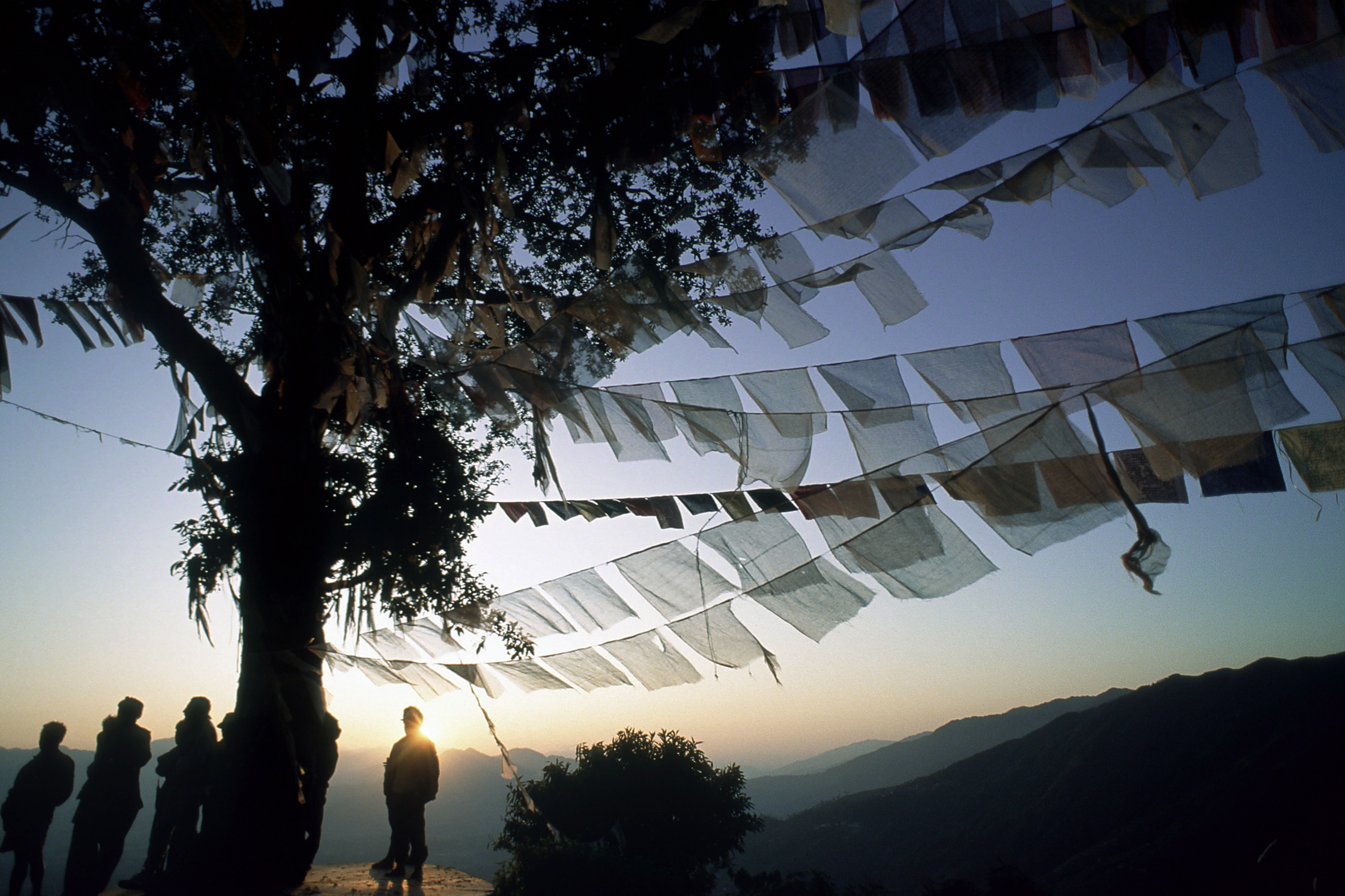 Monks with prayer flags, Nepal
