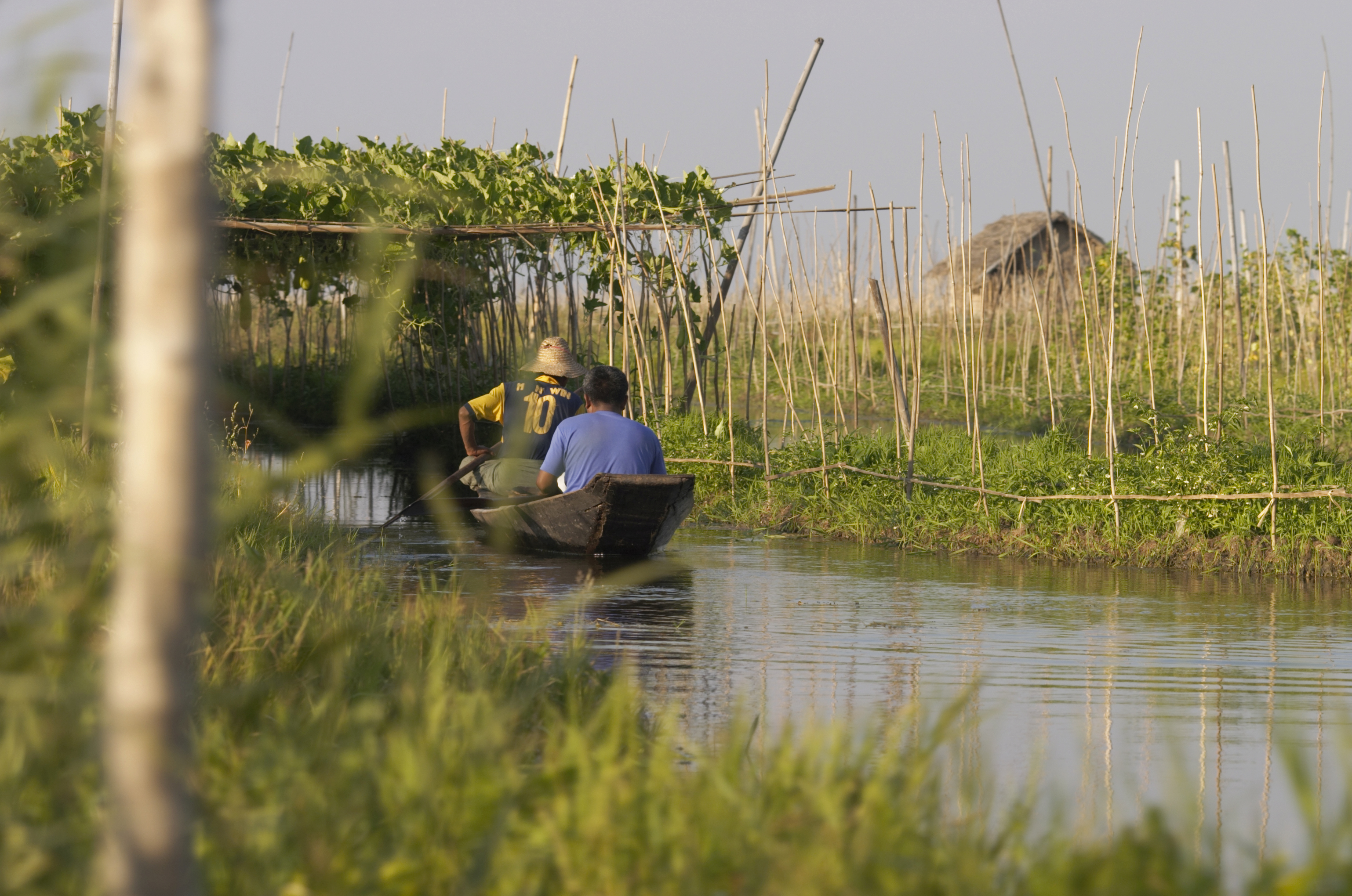 Inle Lake is famed for its floating gardens, Myanmar