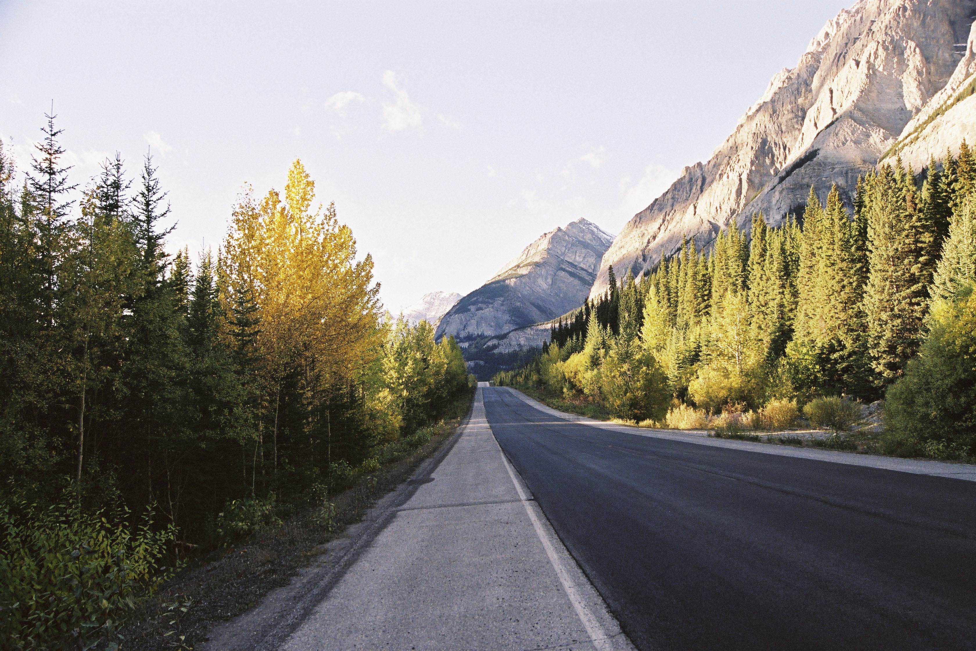 Alberta is paradise for nature lovers
