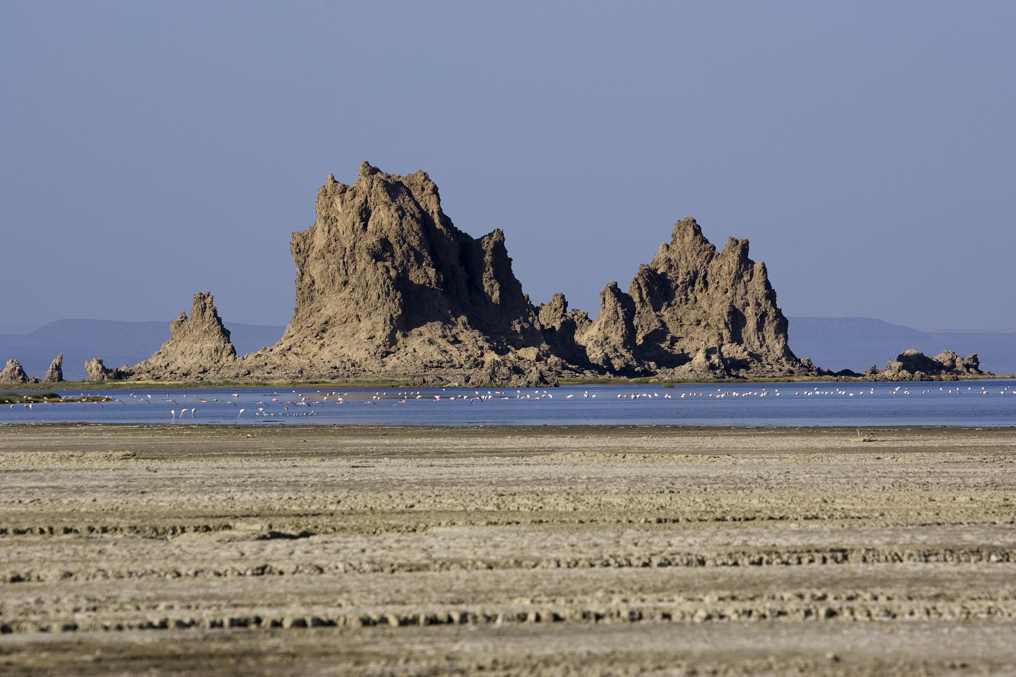 Lac Abbe Flamingos and Rock Formation, Djibouti