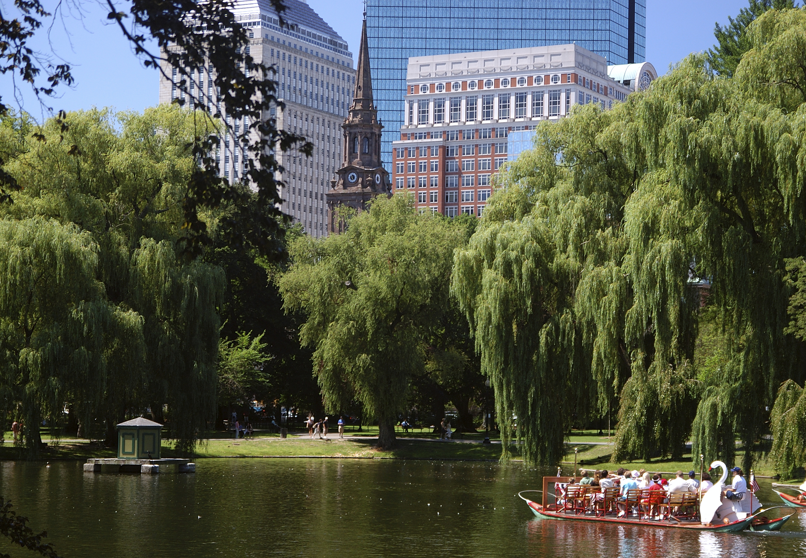 Swan Boats on the Boston Common
