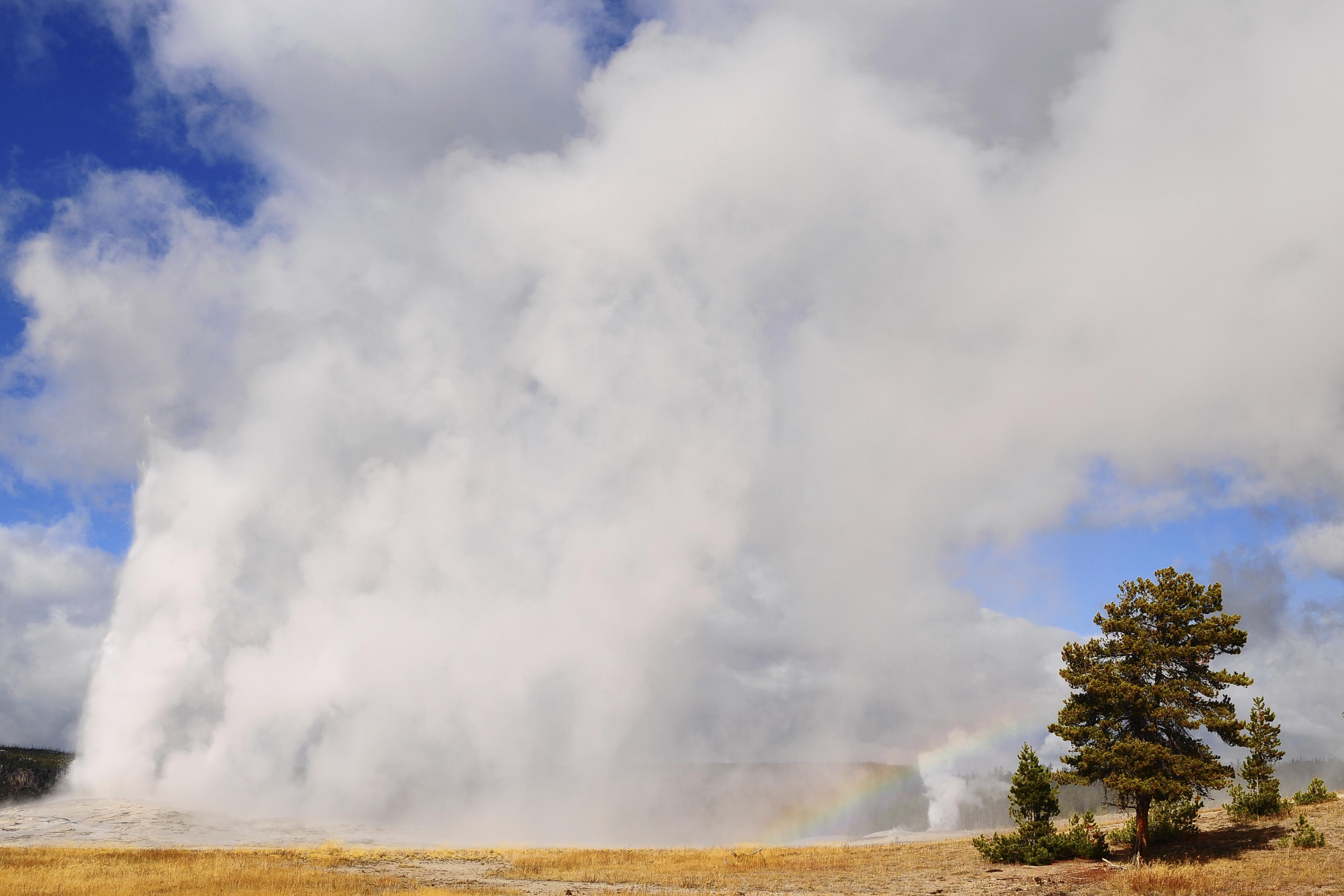Old Faithful geyser, Montana's Yellowstone National Park