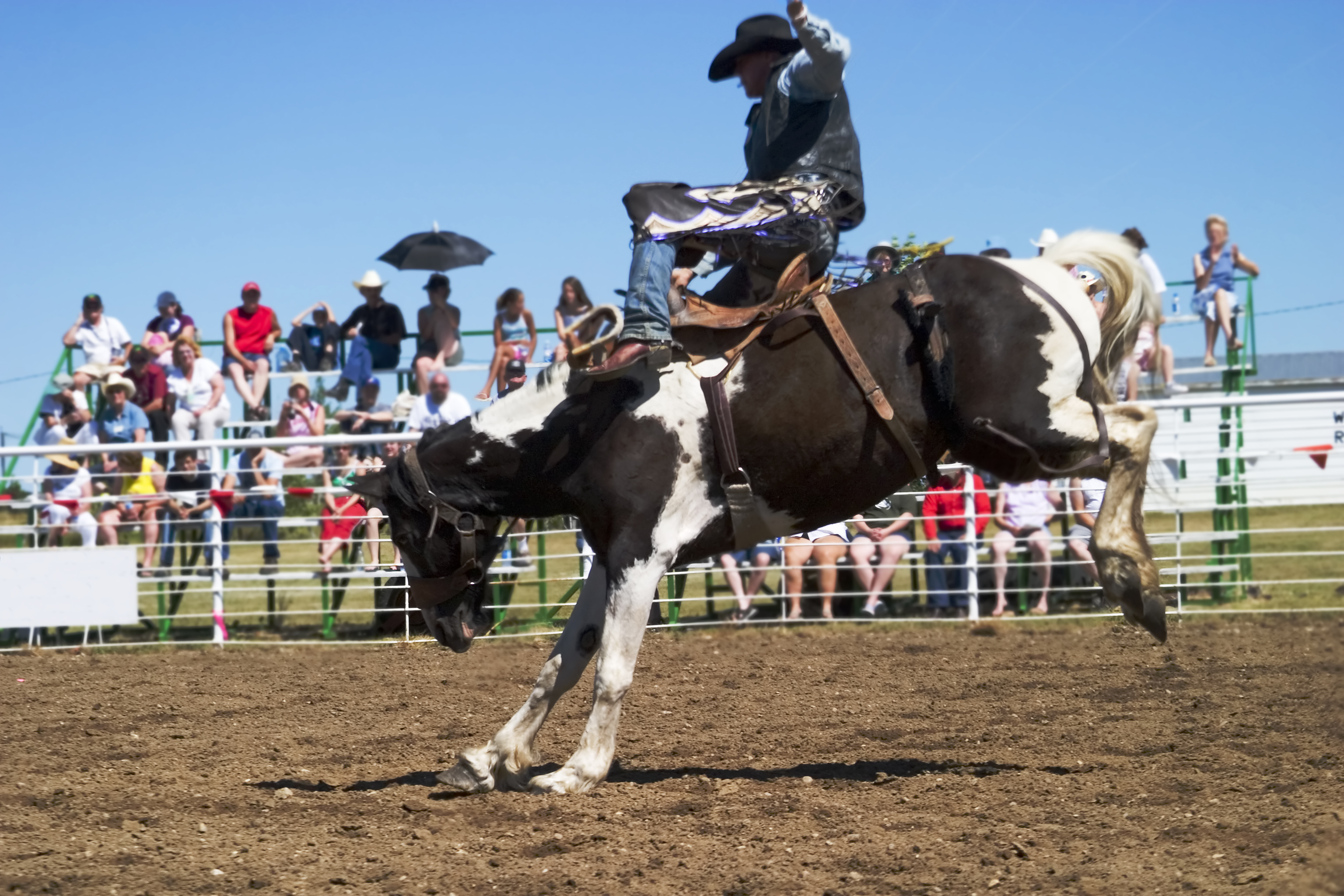 Rodeo in Saskatchewan
