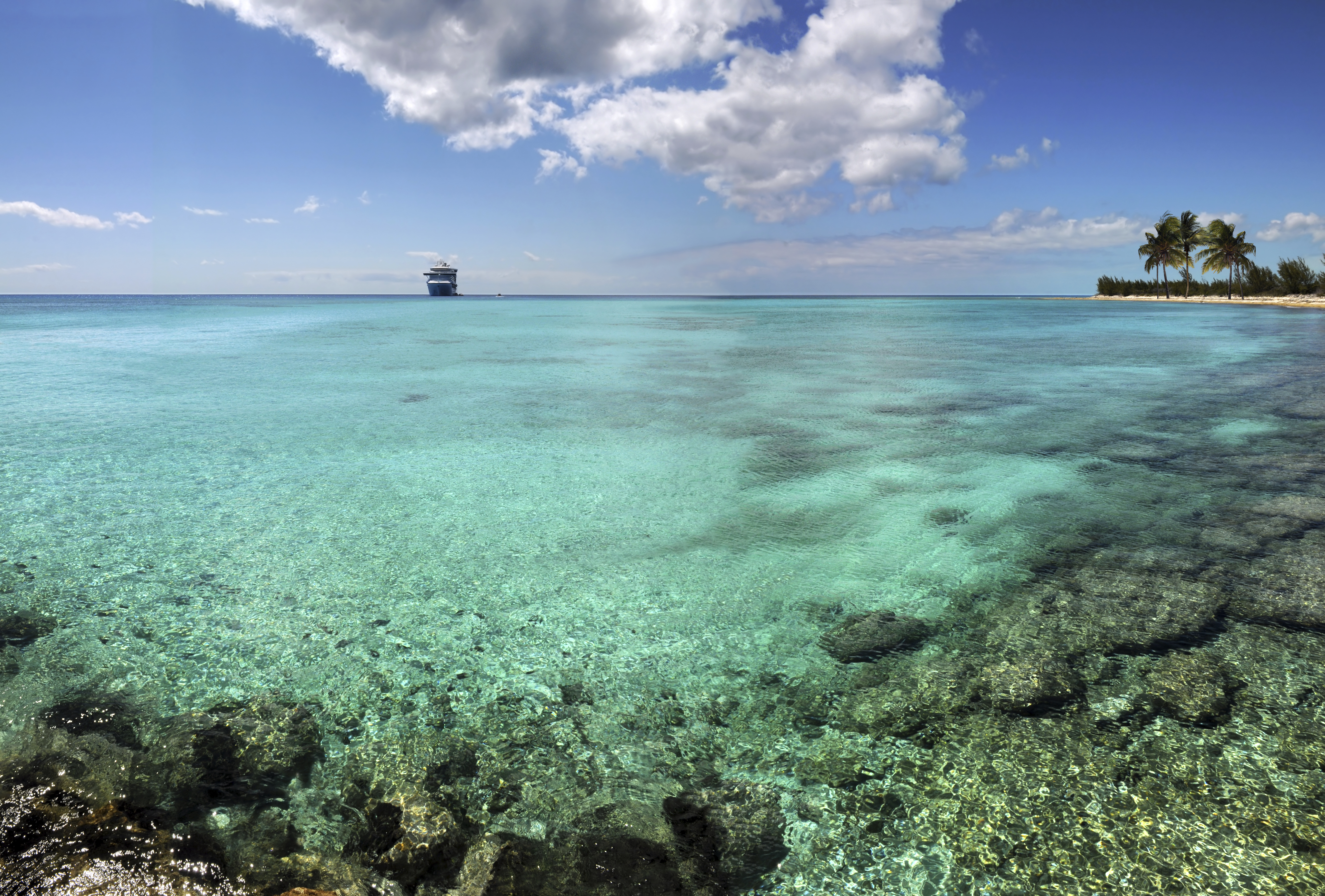 Coral reefs attract divers, Bahamas
