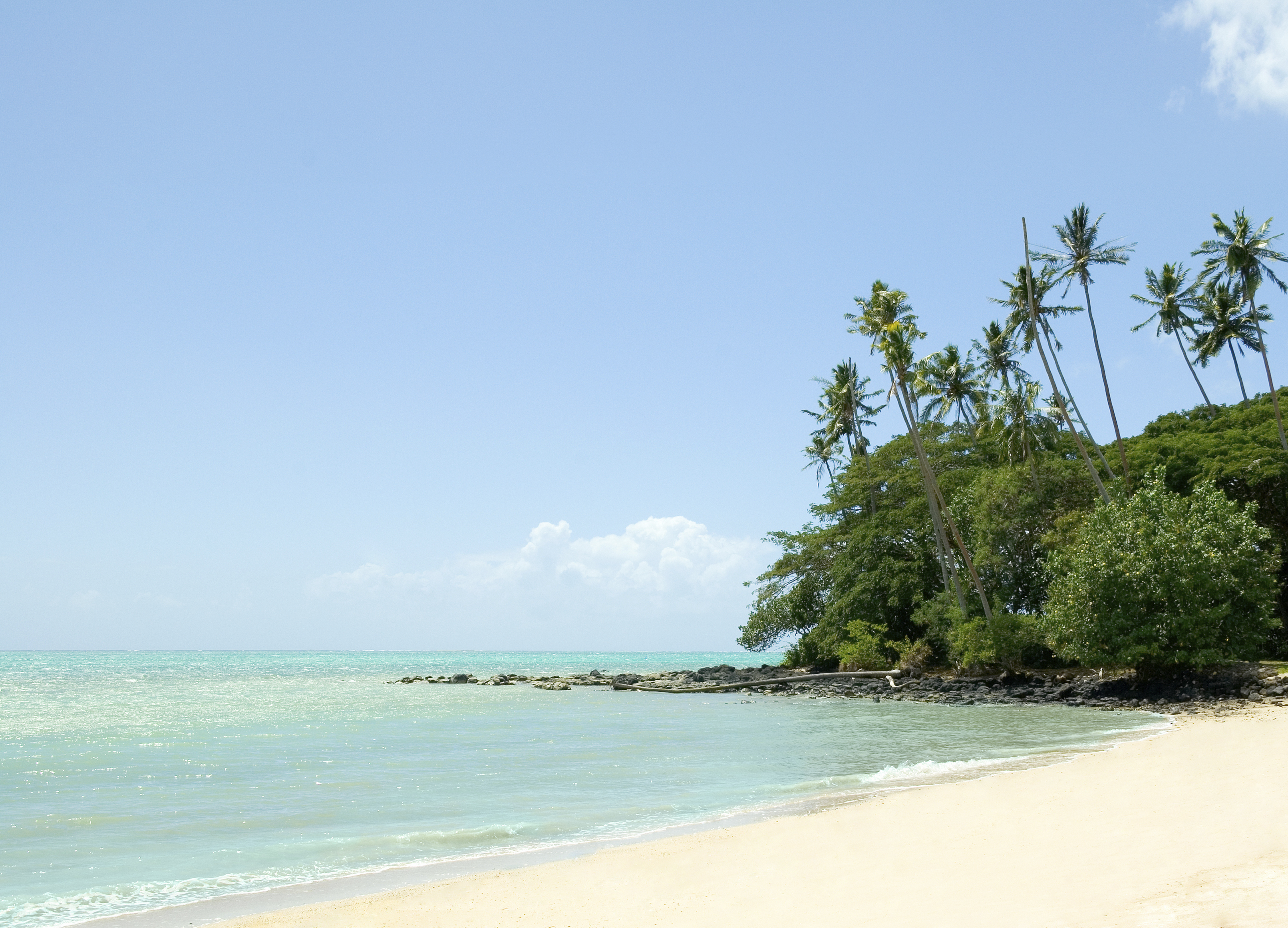 Tropical paradise, American Samoa