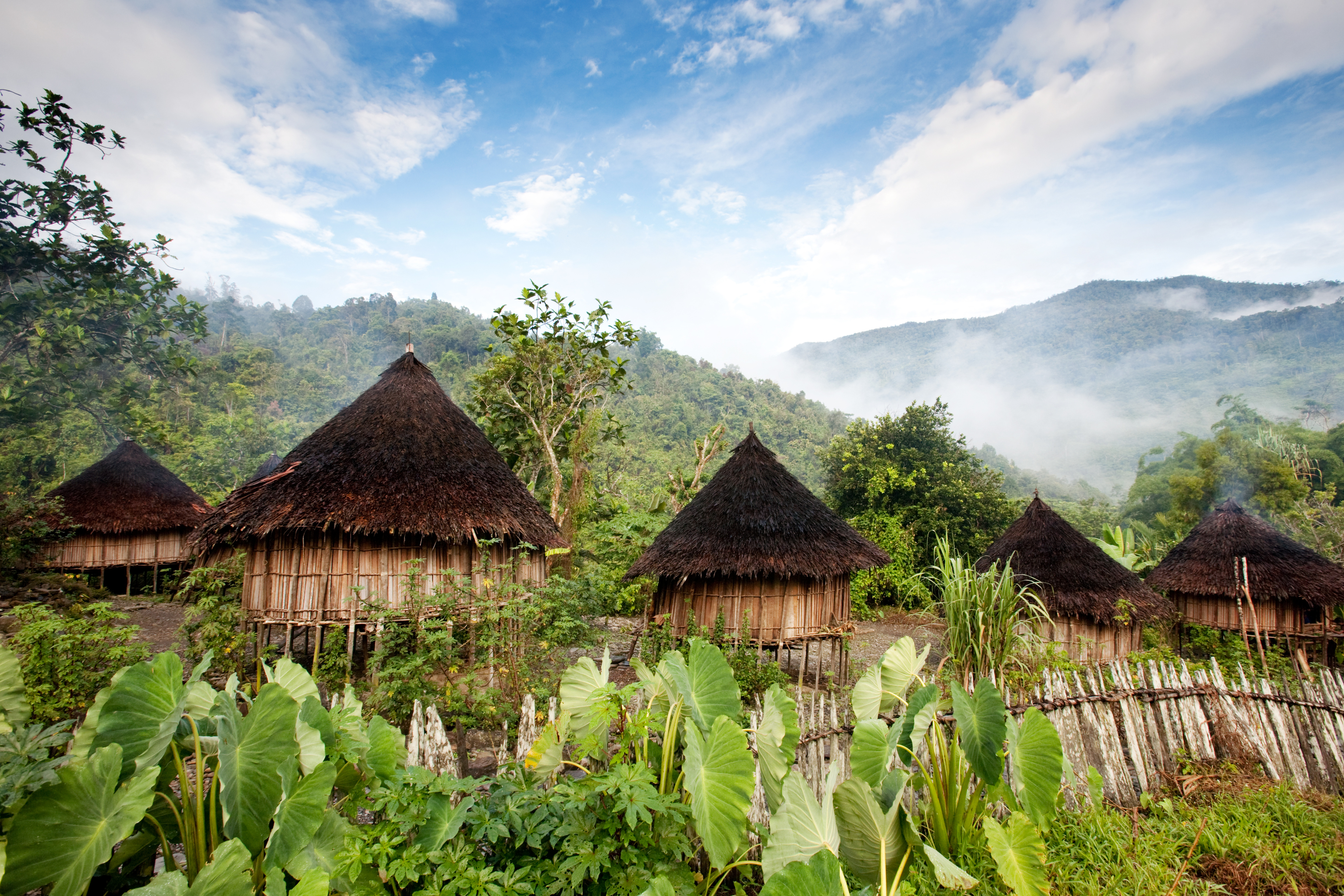 Traditional huts, Papua New Guinea