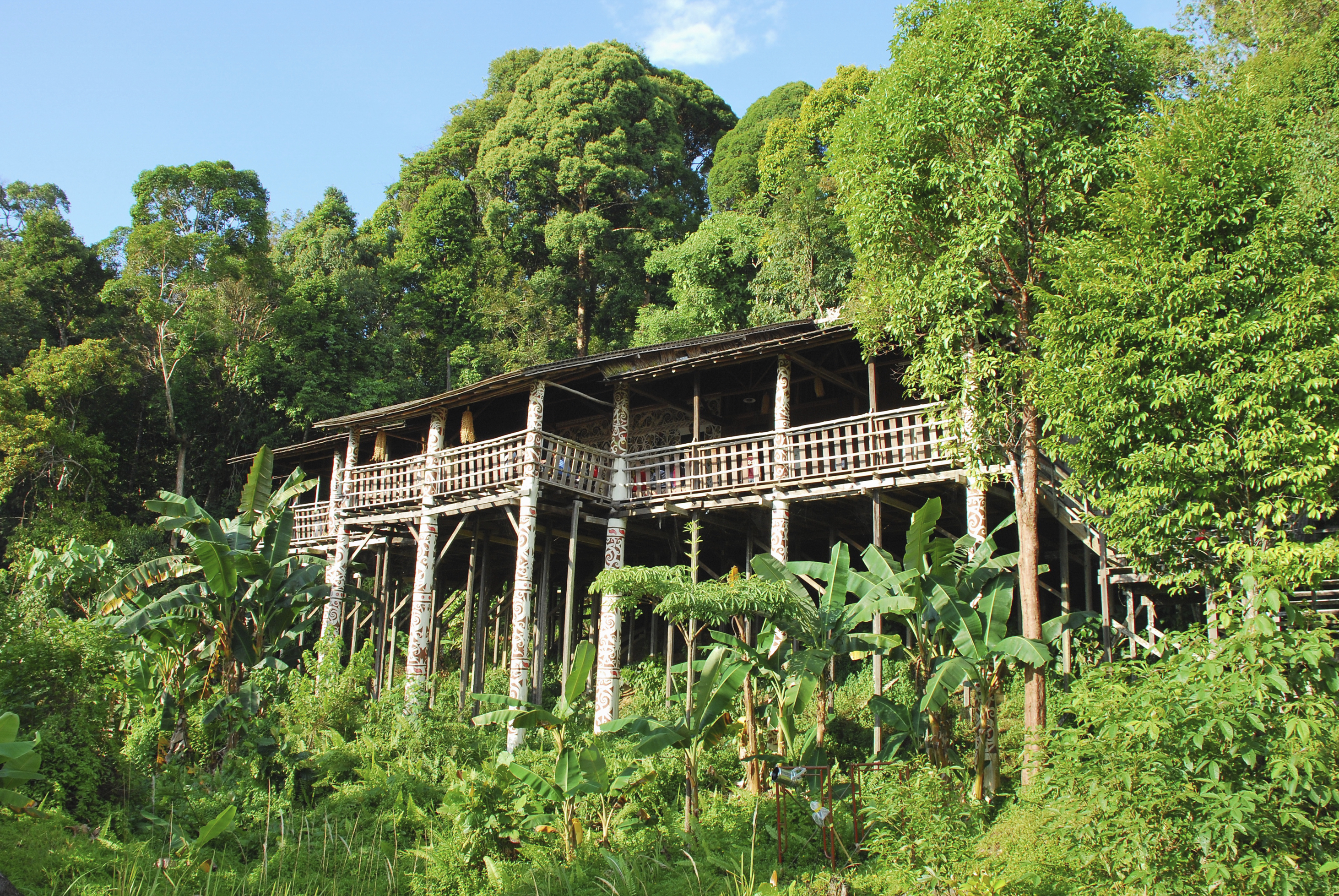 Visit traditional Iban longhouses, Malaysia