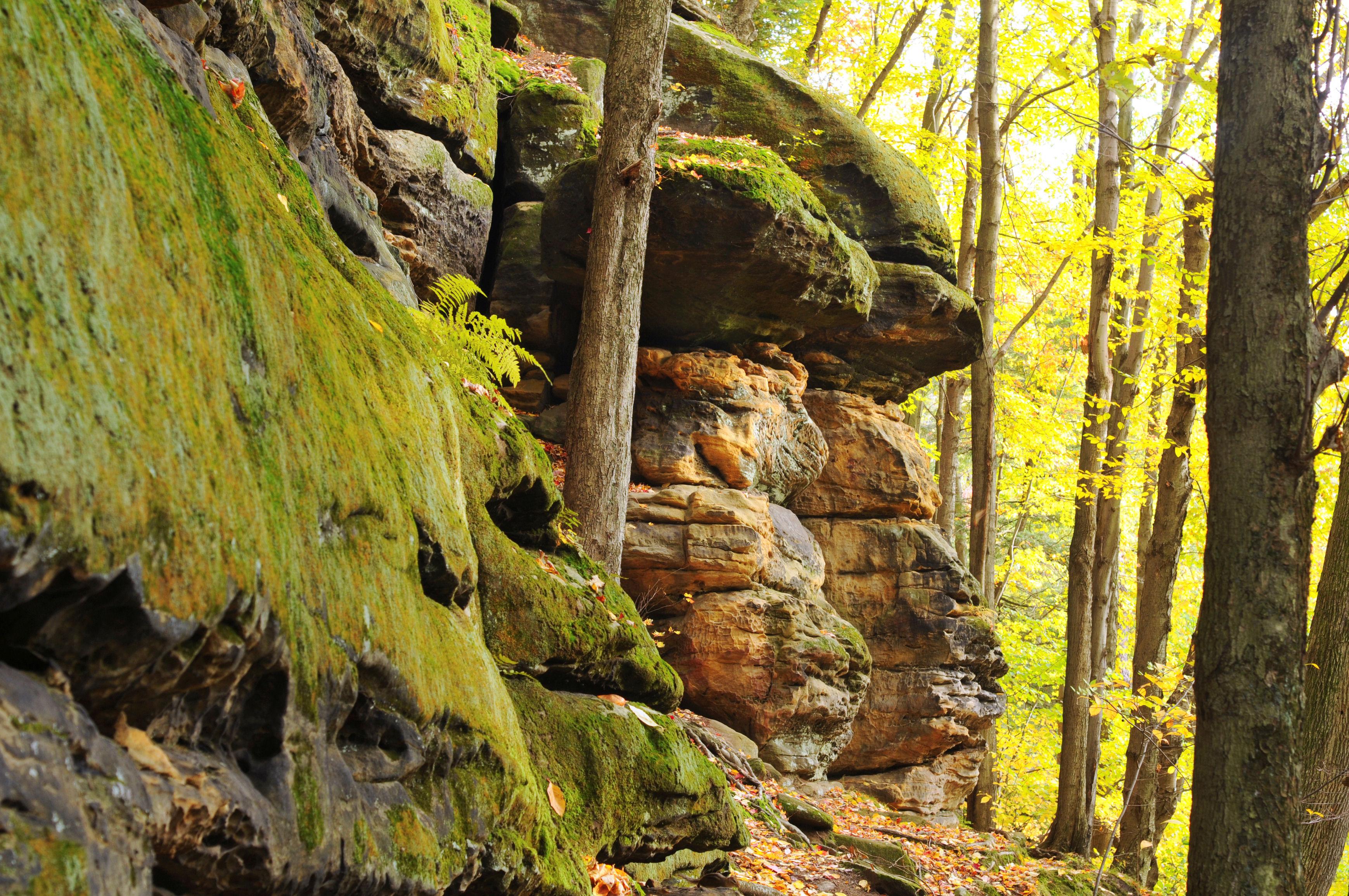 Rock ledge faces, Ohio