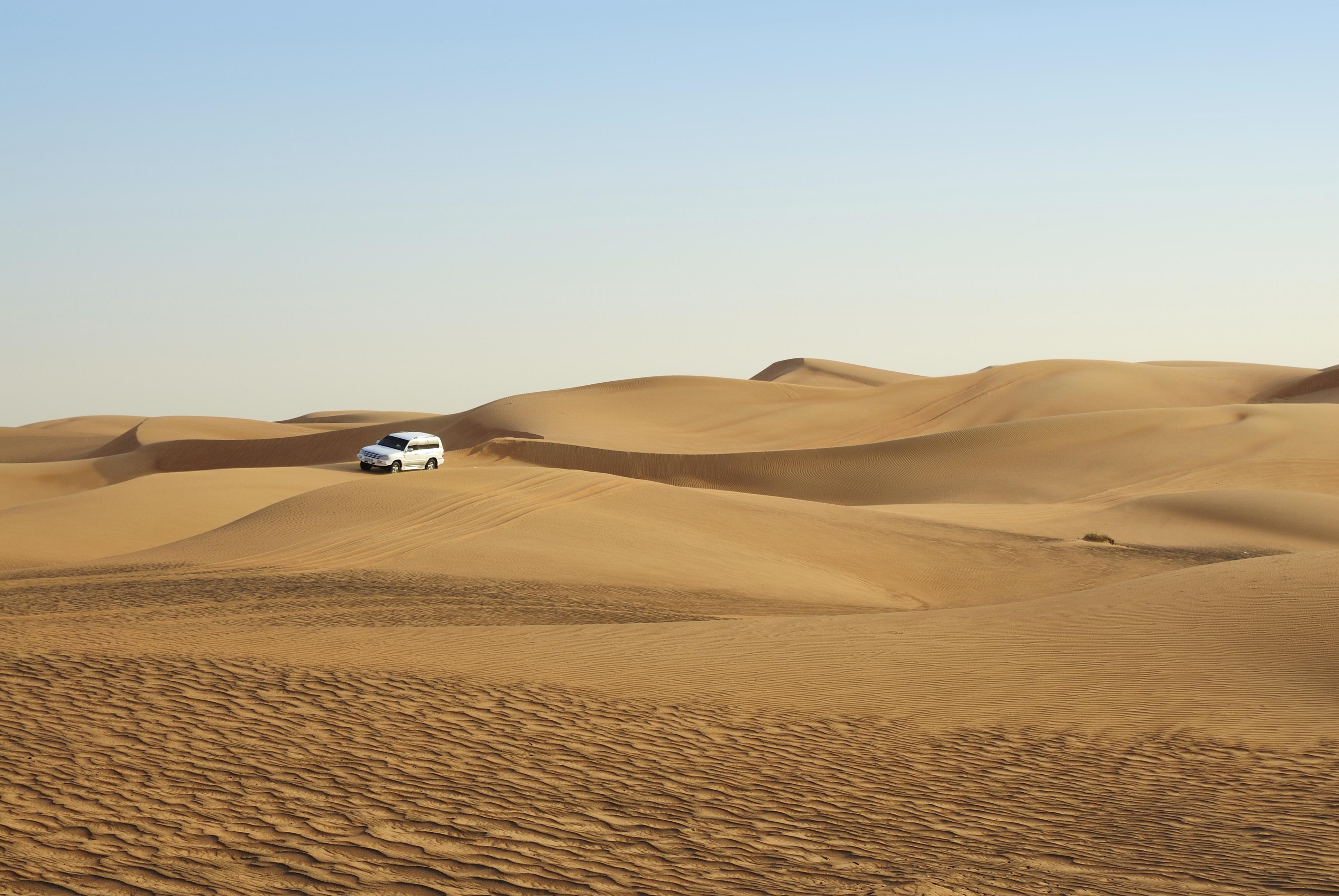 Enjoy a desert safari
