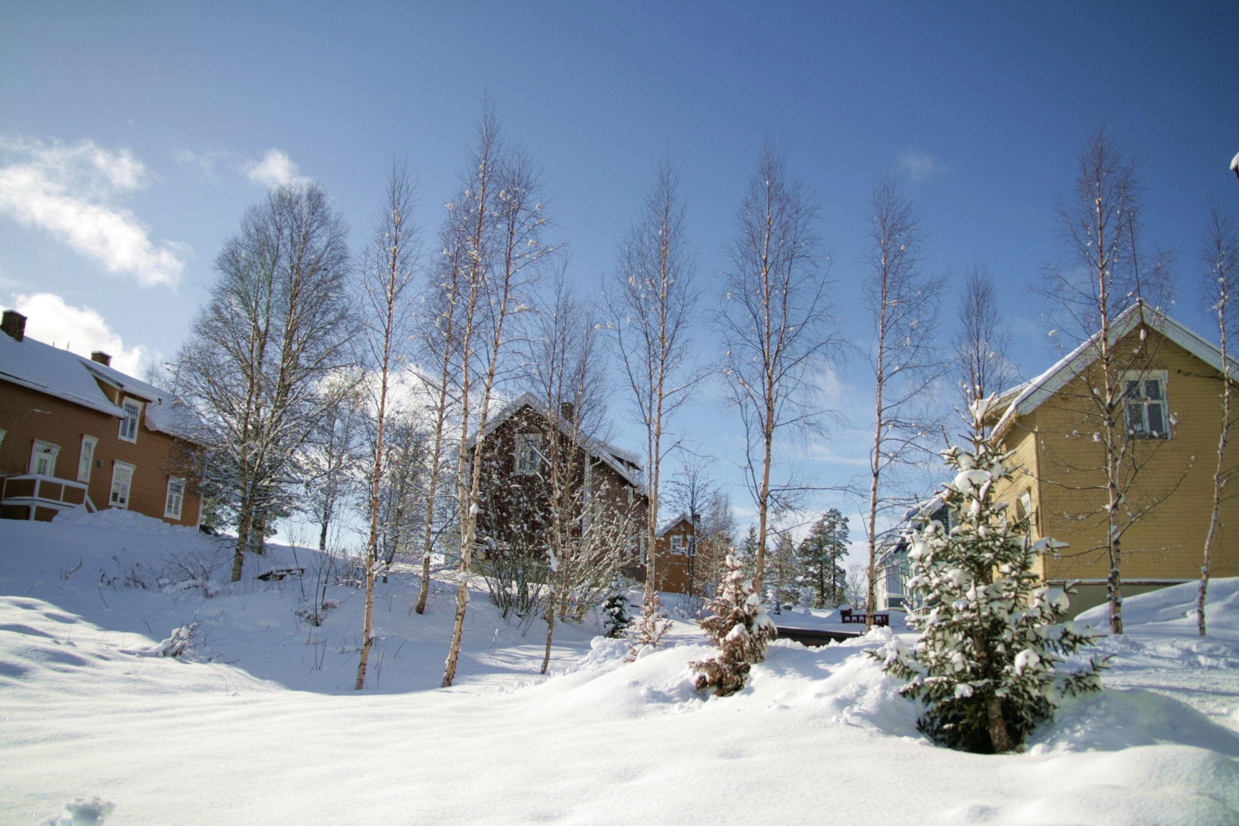 Winter neighbourhood, Norway