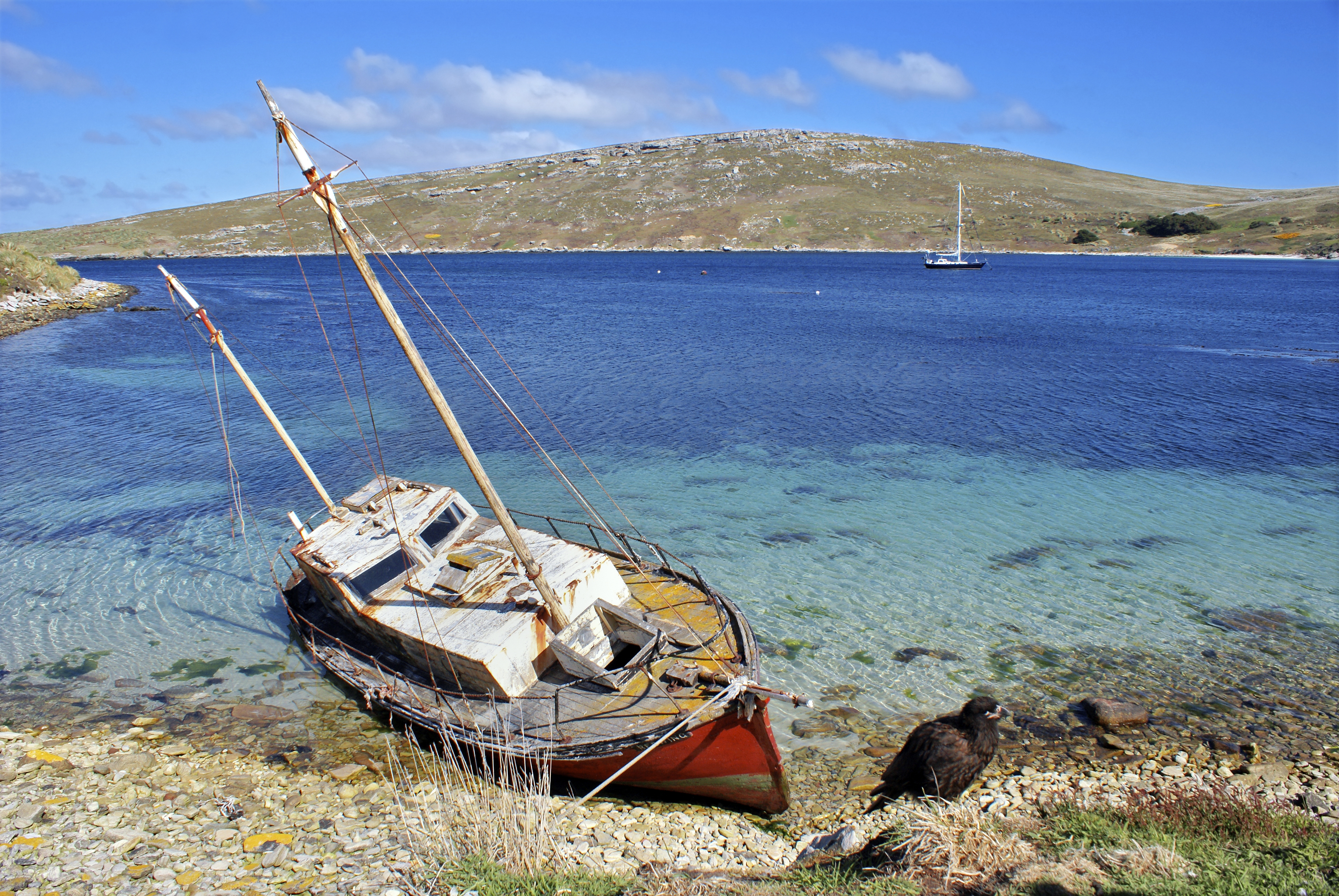 Ship grounded on the Falkland Islands
