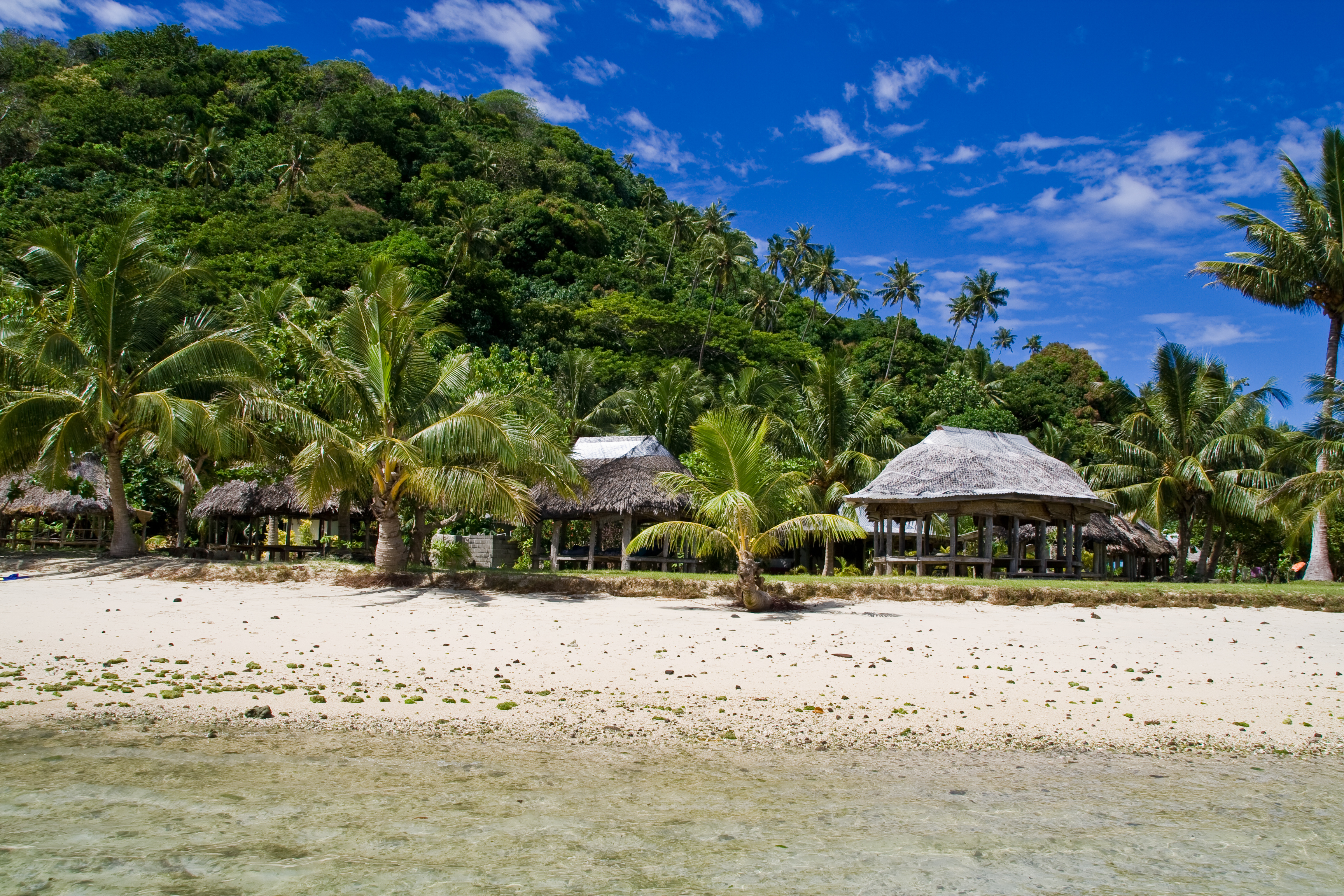 View of samoa's rainforest from the beach