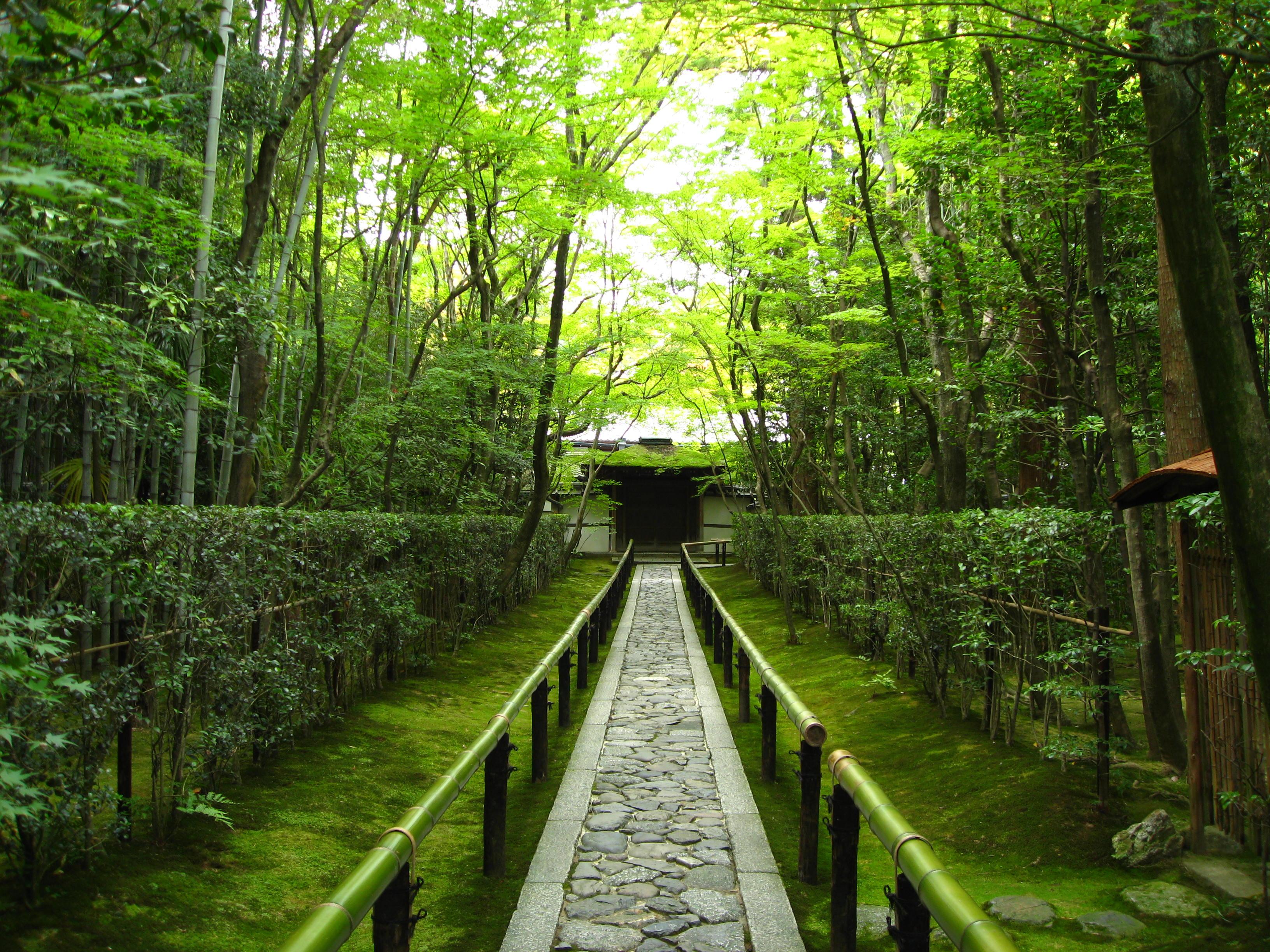 Bamboo forest entrance to Daitoku-ji temple, Kyoto, Japan