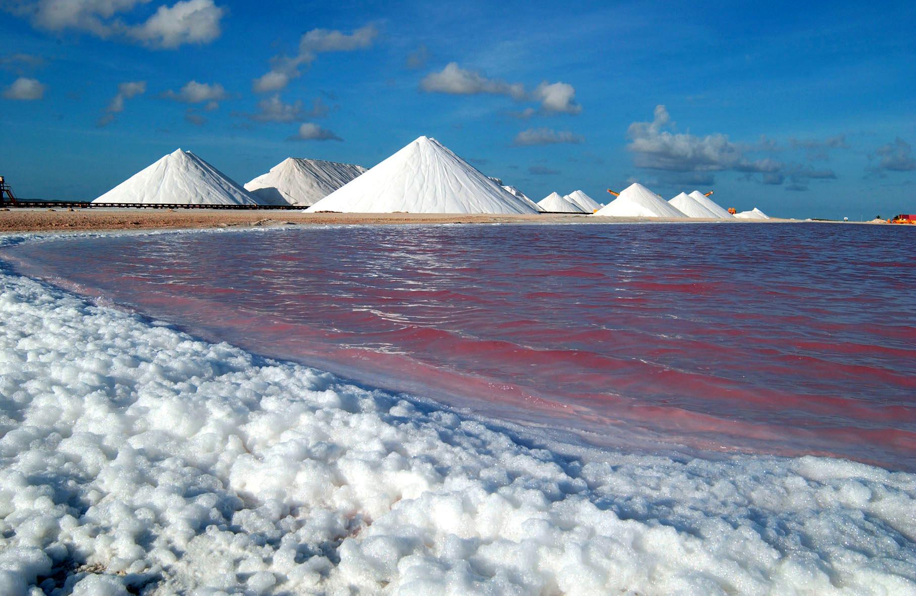 Salt pans of Bonaire